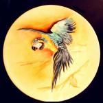 piatto porcellana con pappagallo Ara